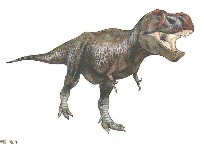 ティラノサウルスの画像 p1_37
